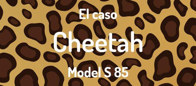 El Caso Cheetah